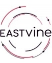 EASTVINE-CAPITAL-PRIVATE-LIMITED